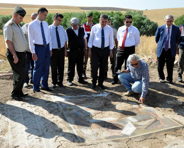 Buğday tarlasında Roma mozaiği bulundu (3)