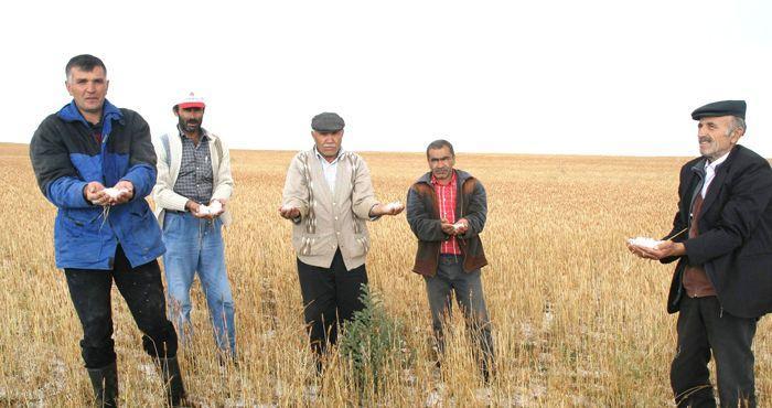 Çiftçilerin Kredi Borçları Erteleniyor