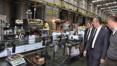 Kırıkkale Valisi Yunus Sezer, Kırıkkale Organize Sanayi Bölgesi ile Keskin Organize Sanayi Bölgesini ziyaret ederek incelemelerde bulundu.