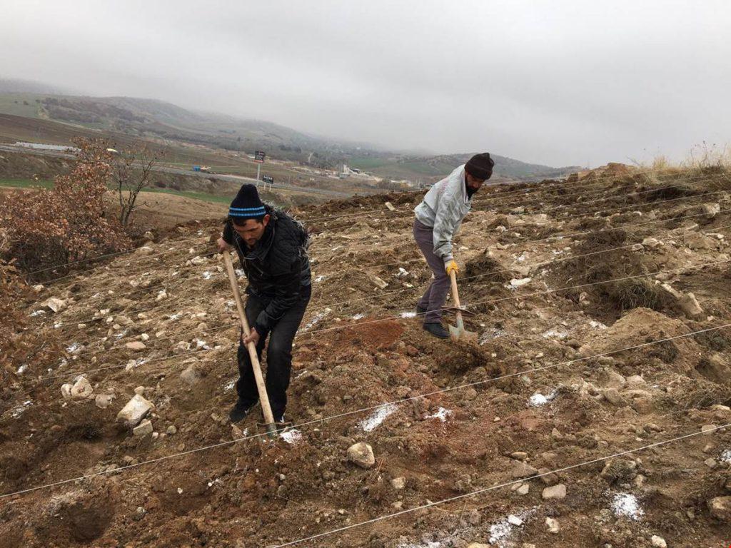 Balışeyh'te Kaymakamlık tarafından başlatılan proje kapsamında oluşturulan 35 dönümlük araziye 15 bin fide dikimi daha yapılarak toplamda 33 bin fide dikilmiş oldu.