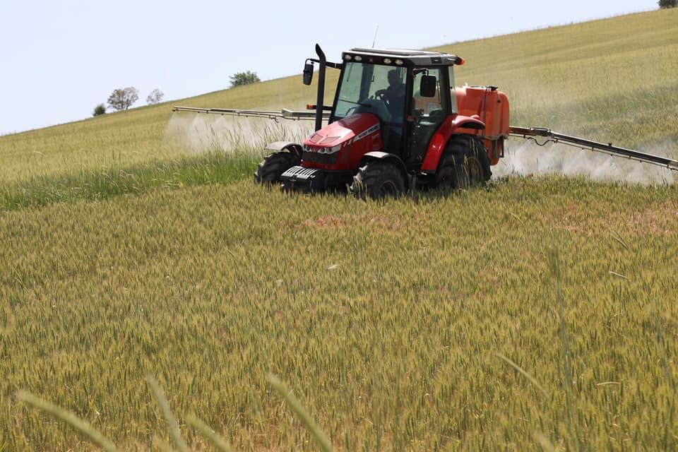 428 bin dekar arazide süne tespit edildi 2 - 428 bin dekar arazide süne tespit edildi