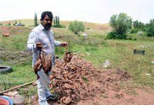 Photo of 718 hindisi selde telef oldu