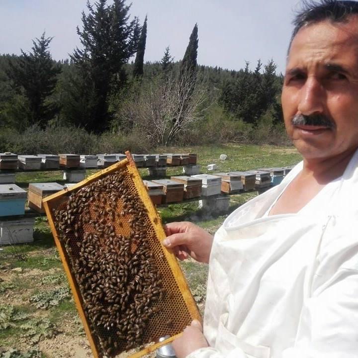 Arılar zehriyle de şifa dağıtıyor 1 - Arılar zehriyle de şifa dağıtıyor