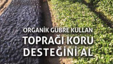 Photo of Organik gübre kullanan çiftçilere destek