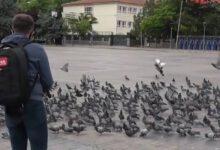 Photo of Gazeteciler ve Polisler Güvercinleri Besledi