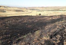 Photo of Kırıkkale'de tarla yangını Tarım arazisinde çıkan yangın 1 saatte söndürüldü